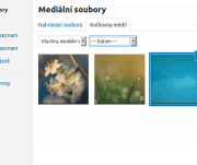 Obrázky a galerie ve WordPress
