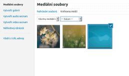 wordpress-clanek-media-knihovna